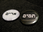 Priest Urim and Thummim