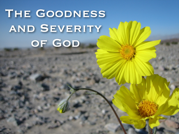 Goodness and severity